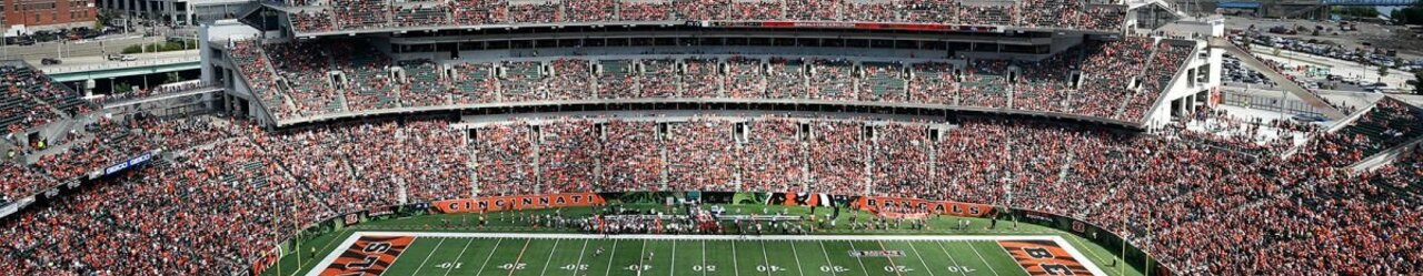 100415 nfl cincinnati bengals paul brown stadium pi ssm.vresize.1200.675.high .1